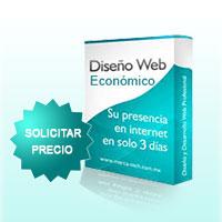 precio diseño web economico
