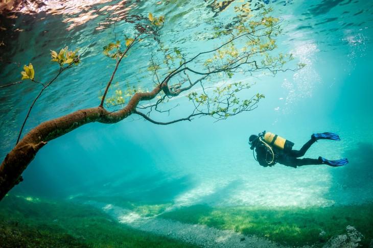 buzo en el fondo del mar