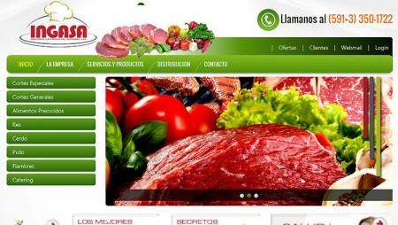 sitio web ingasa