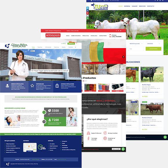 portafolio sitios web para pymes