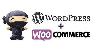 desarrollo-tiendas-online-wordpress-woocommerce